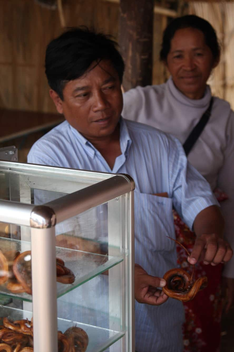Fried Snakes in Cambodia