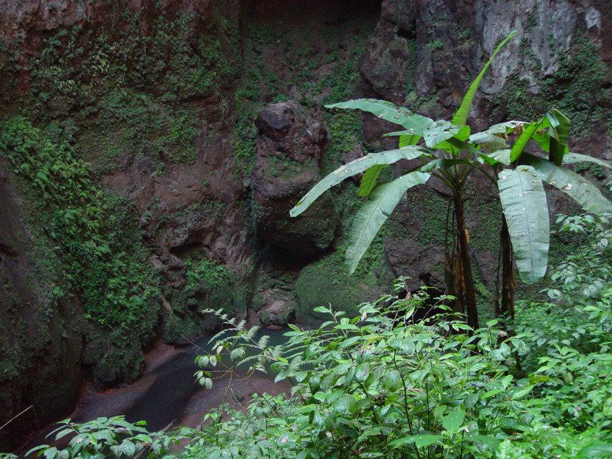 Puerto Rico Rio Camuy Cave
