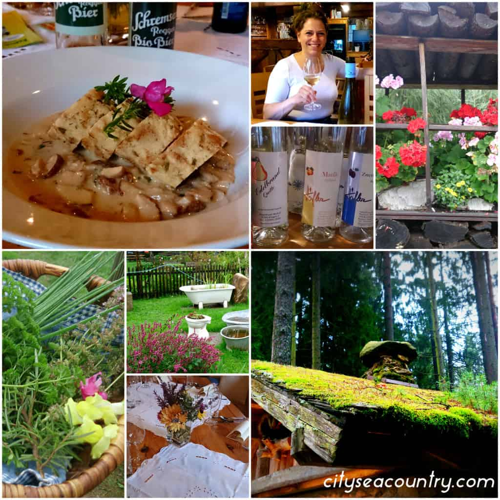 Gourmet Tips And Unique Places At The Waldviertel
