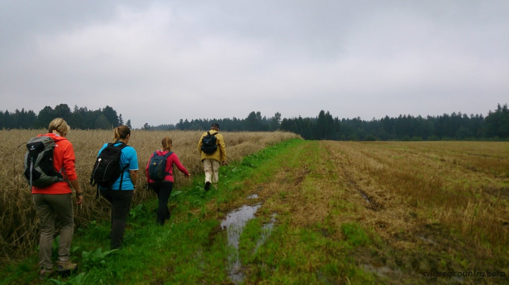 Waldviertel, Austria - Hiking along the 20 km long Weitwanderweg