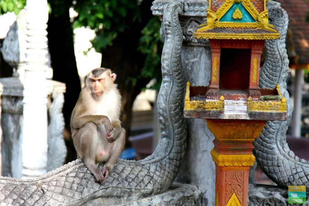 Impressionen aus Kambodscha: Top 10 abseits von Angkor
