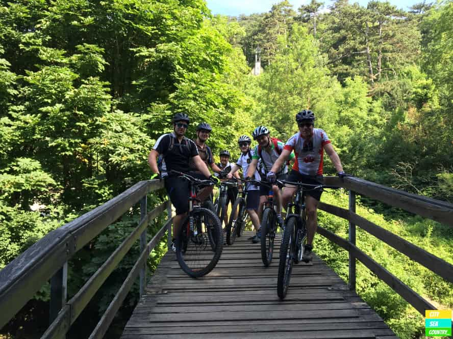 Mountain Biking in Austria - Wienerwald