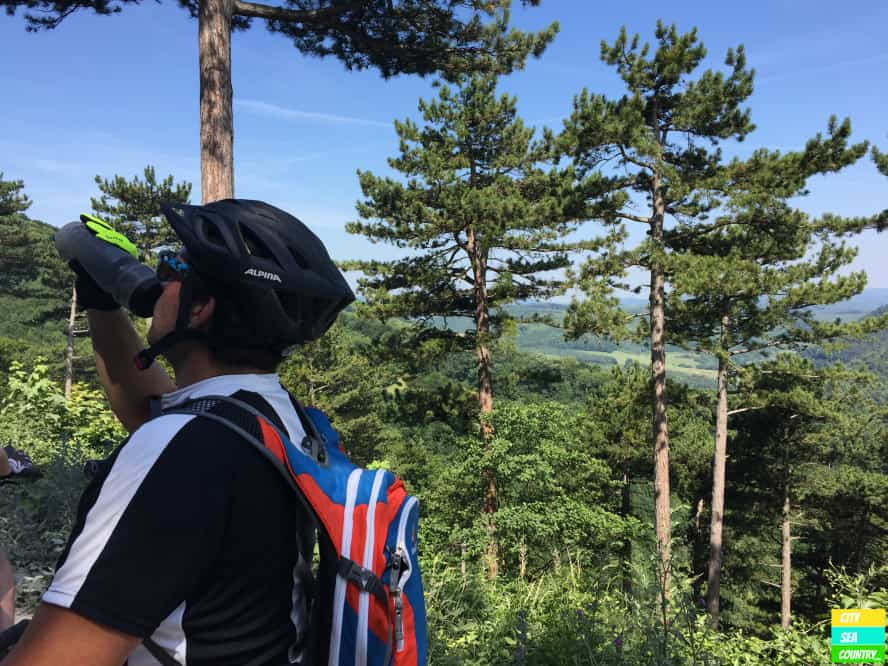 Mountain Biking in Austria: Wienerwald
