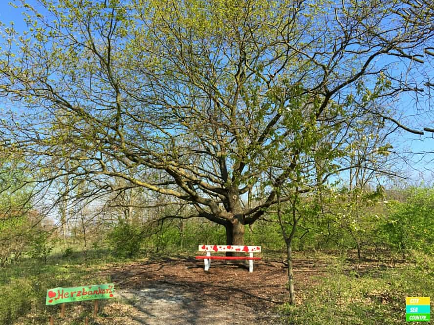 Lover's tree and bench. A popular place here at the Vila Vita Pannonia