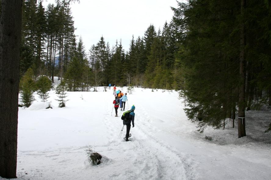 Schneeschuhwanderung in Abtenau, Salzburger Land