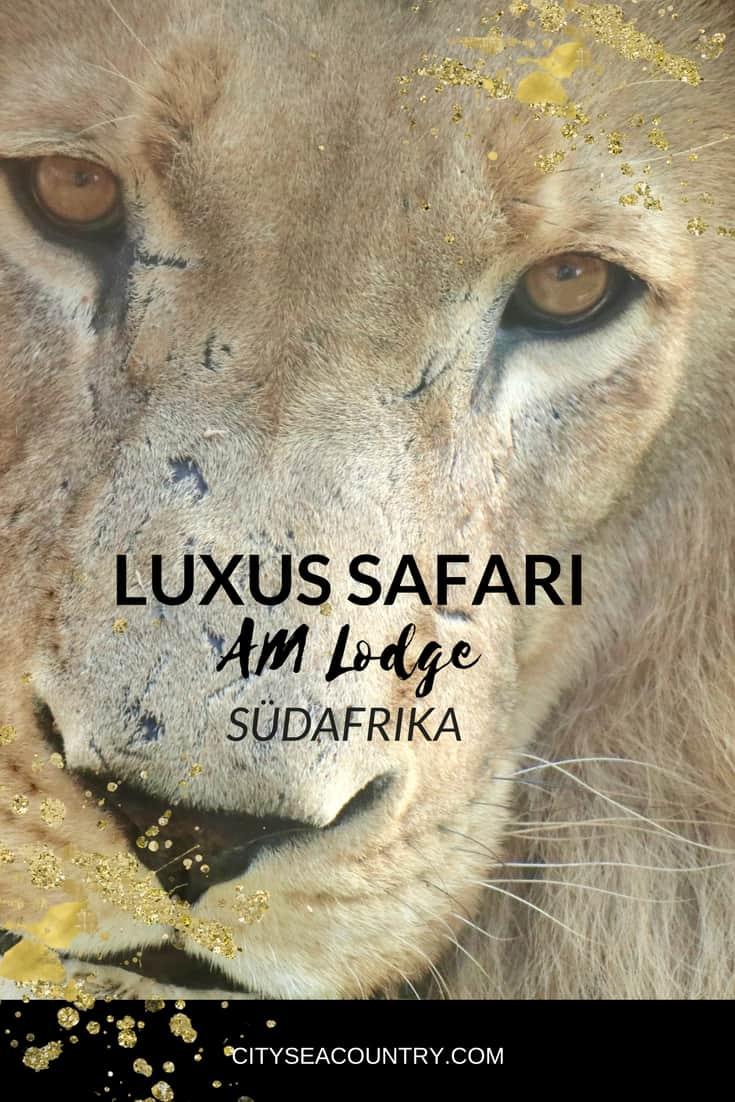 Luxus-Safari Lodge in Südafrika: Alles Wissenswerte und Videoeindrücke über die AM Lodge am Rande des Krüger Nationalpark
