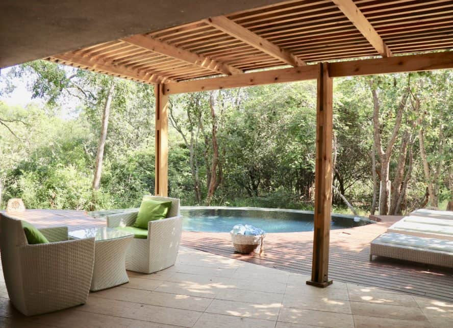 Luxury Safari South Africa: The AM Game Lodge