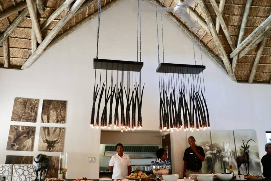 Luxury Safari in South Africa: The AM Lodge
