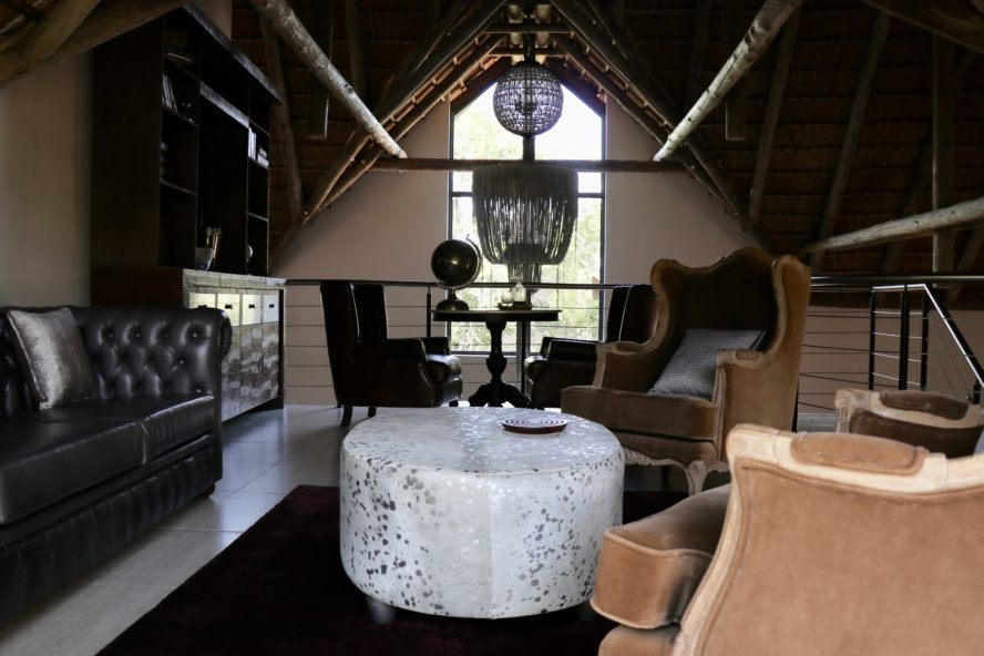Luxury Safari South Africa: The AM Lodge
