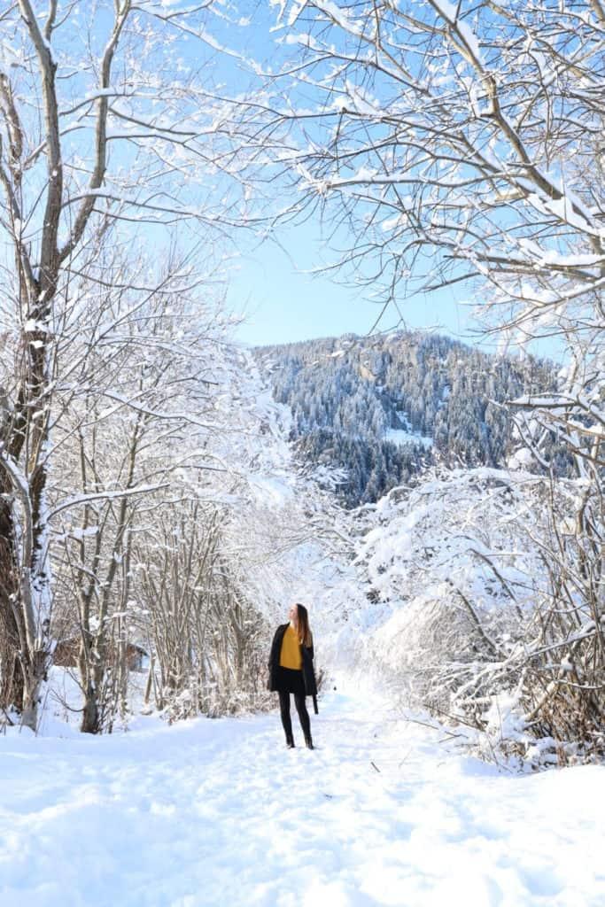 Fotografietipps: Winterlandschaft und Schnee fotografieren