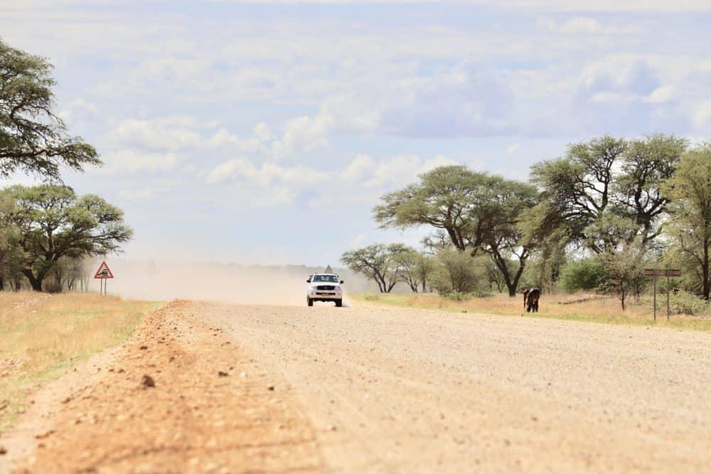 Namibia Roadtrip: 14 Tage als Selbstfahrer unterwegs / Alles, was du wissen musst