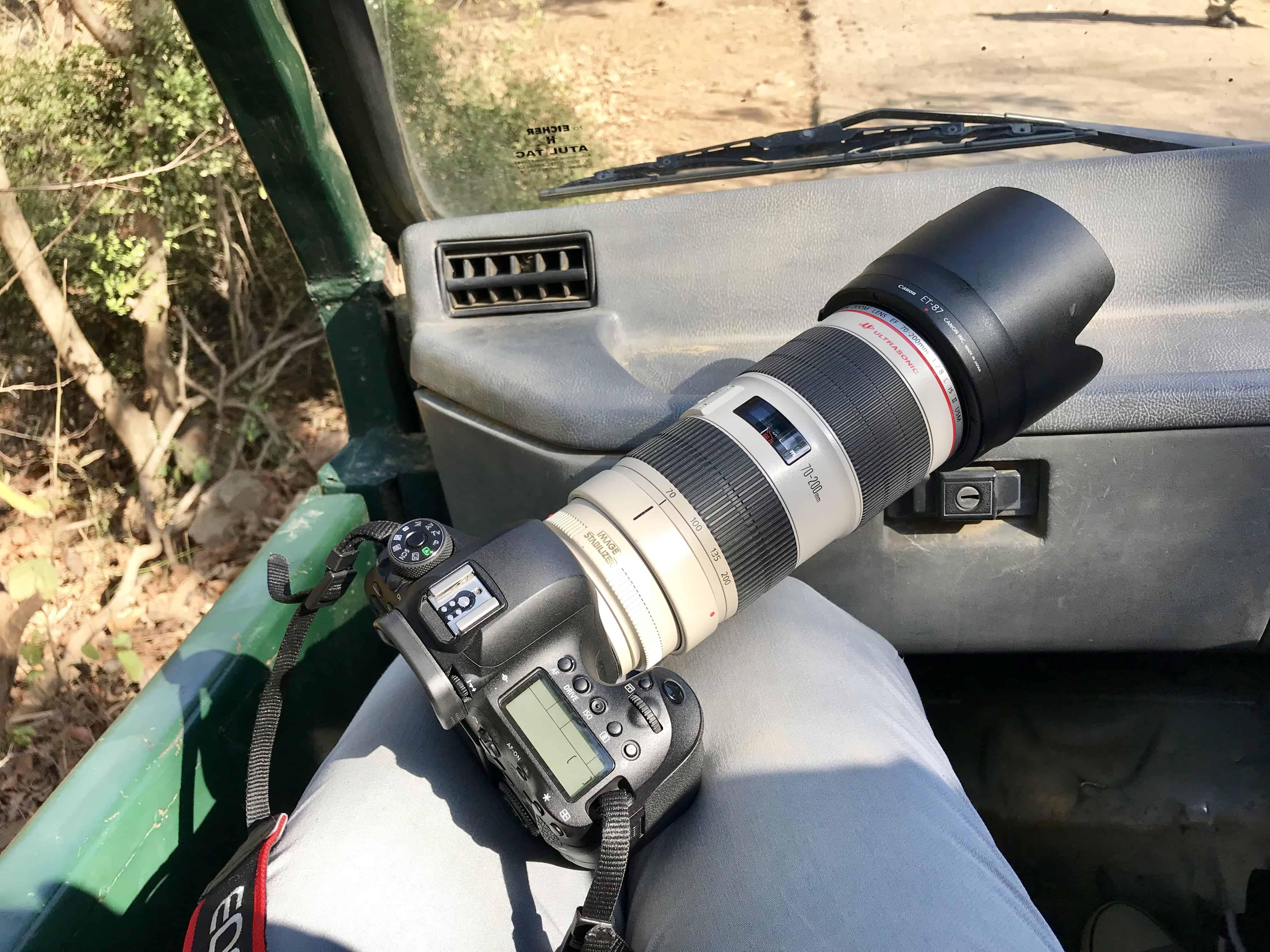 Fotografieren auf Reisen: Safari und Wildtierfotografie